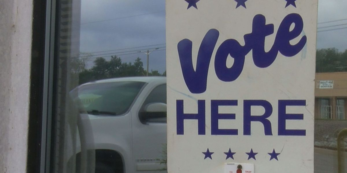 It's Your Money: Horry County's Election Dept. adds new positions, but staffing remains low