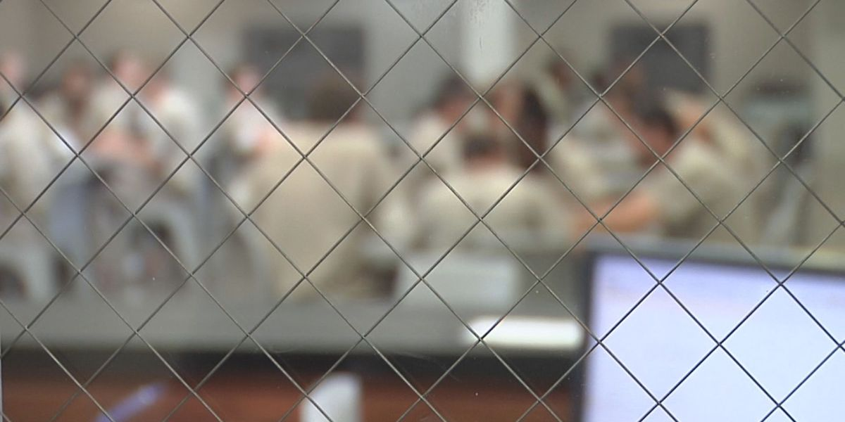 It's Your Money: Horry County inmate population down but more resources may be needed