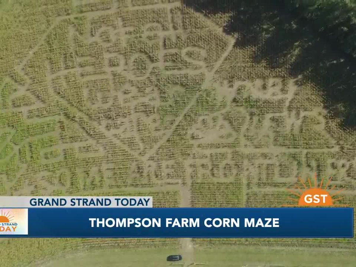 Thompson Farm Corn Maze has a design every year