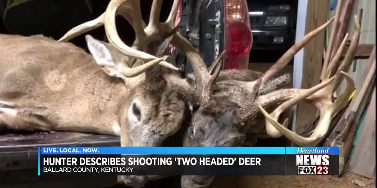 'Two-headed' deer shot in Ballard County, KY