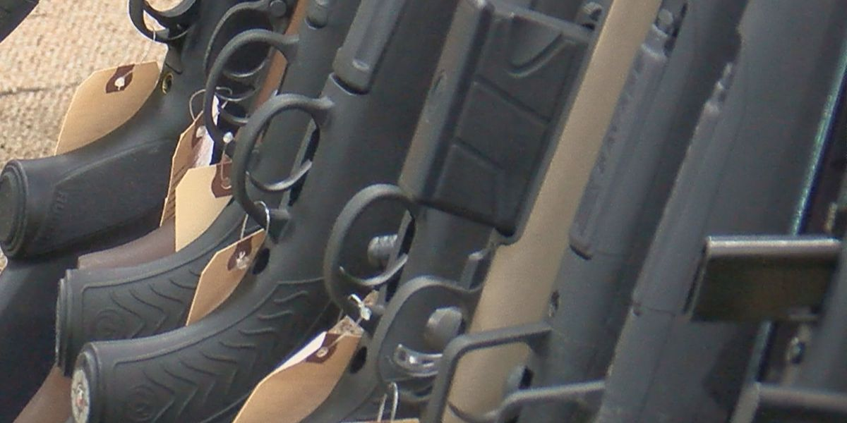 Horry County leaders send firearm ordinance back to public safety committee
