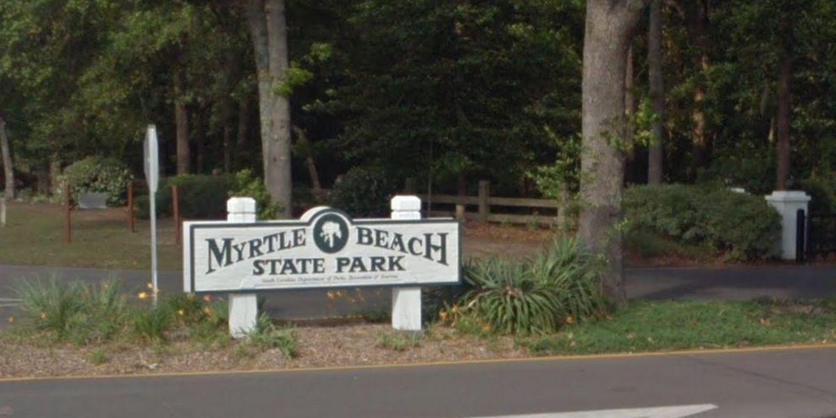 Child struck by vehicle in Myrtle Beach State Park Sunday