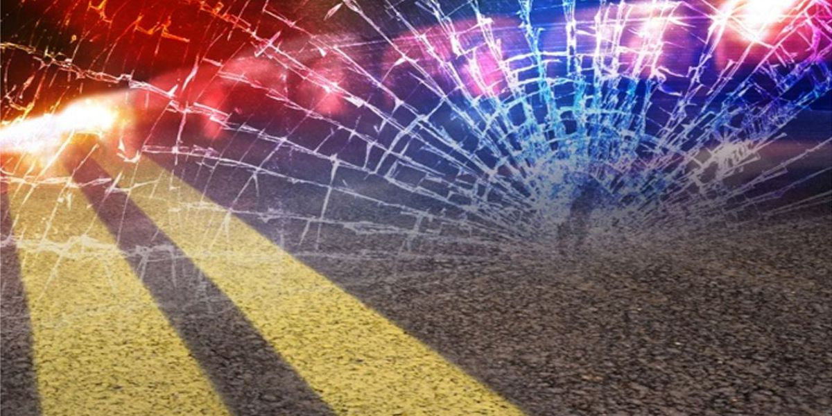 SCHP: Driver killed after hitting tree in Marlboro County