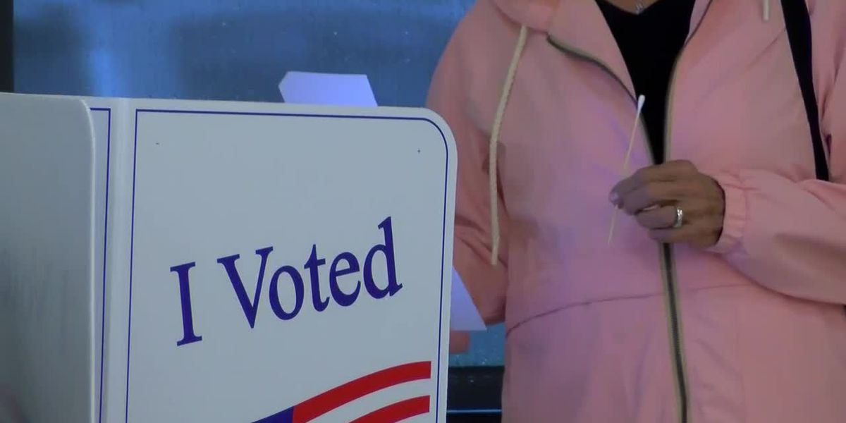 Decision 2020: Primary races to determine slots on November ballot