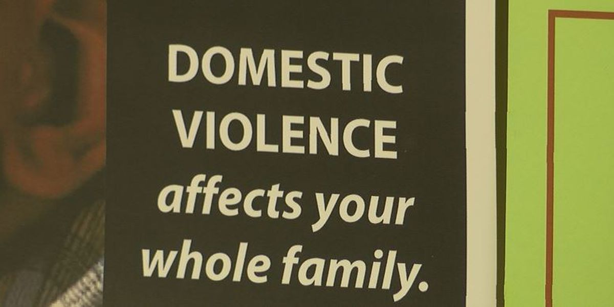 Organization receives grant to support mental health services for DV victims