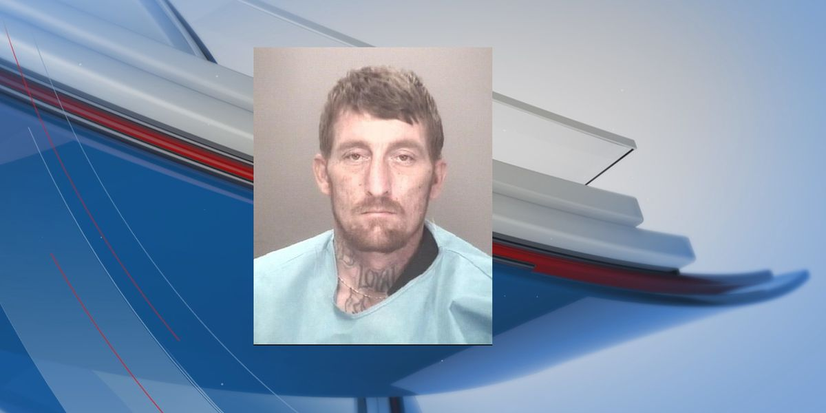 Robeson County break-in suspect arrested after pursuit, deputies say