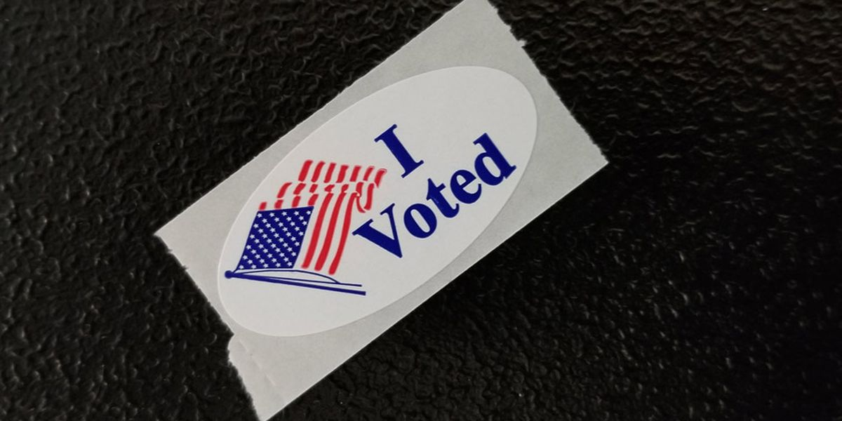 ABSENTEE VOTING: Where to cast an absentee ballot in person across the Grand Strand, Pee Dee