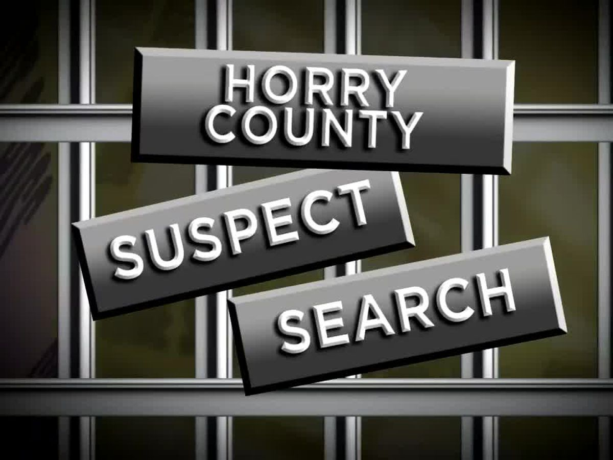 Suspect Search: One suspect charged with assault, another accused of stealing, concealing items