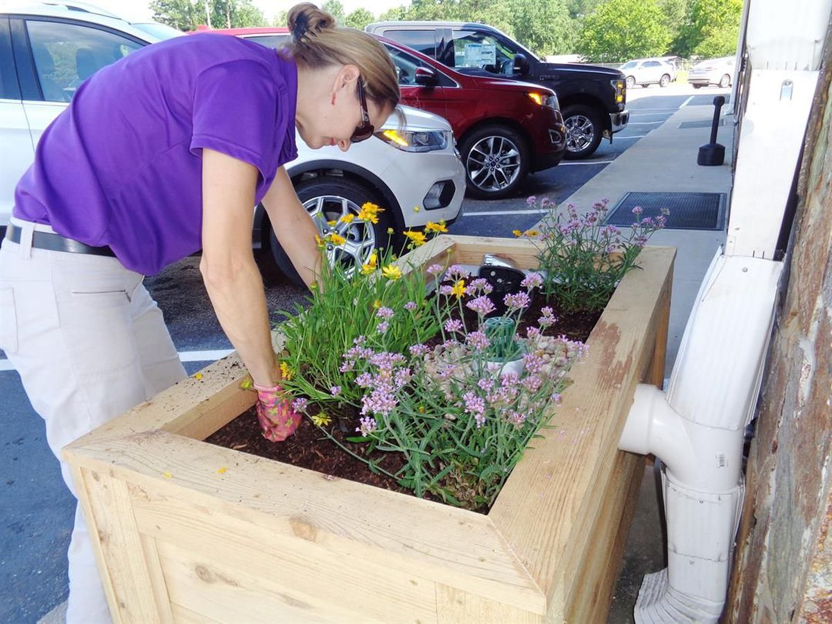 Myrtle Beach Automotive >> Grant program provides two stormwater planter boxes at Pee ...