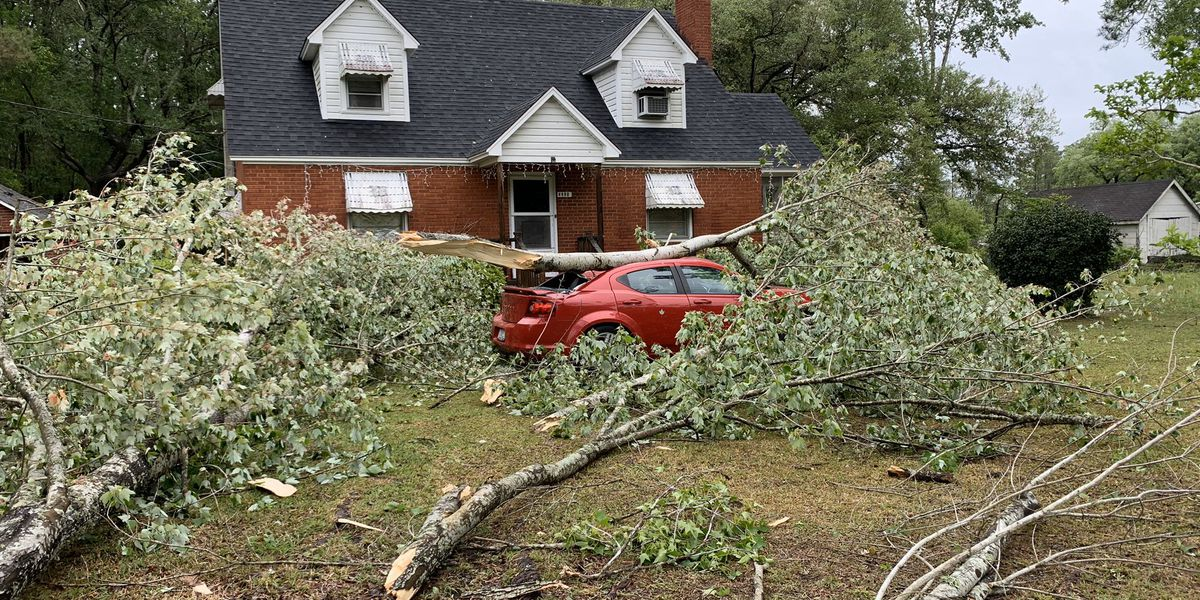 Damage reported after severe storms move through Grand Strand, Pee Dee