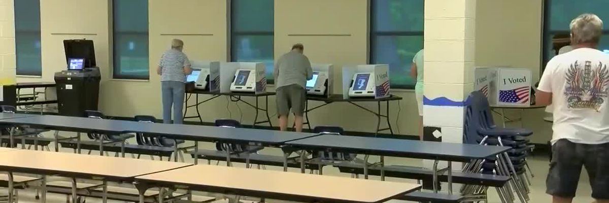 Horry County Democratic Party urging voters to contact state lawmakers to ensure safe, fair election