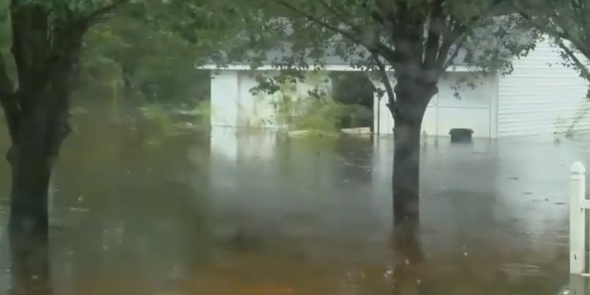 Volunteers needed in Conway area for Florence clean-up efforts