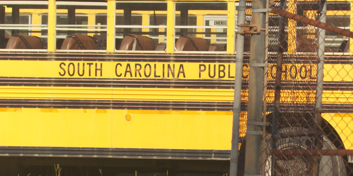 S.C. to buy hundreds of new school buses with Volkswagen settlement funds