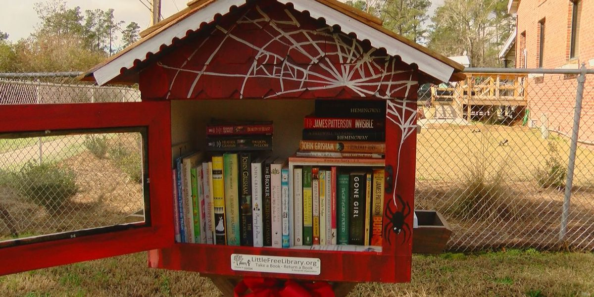 Little Free Libraries come to life in Conway