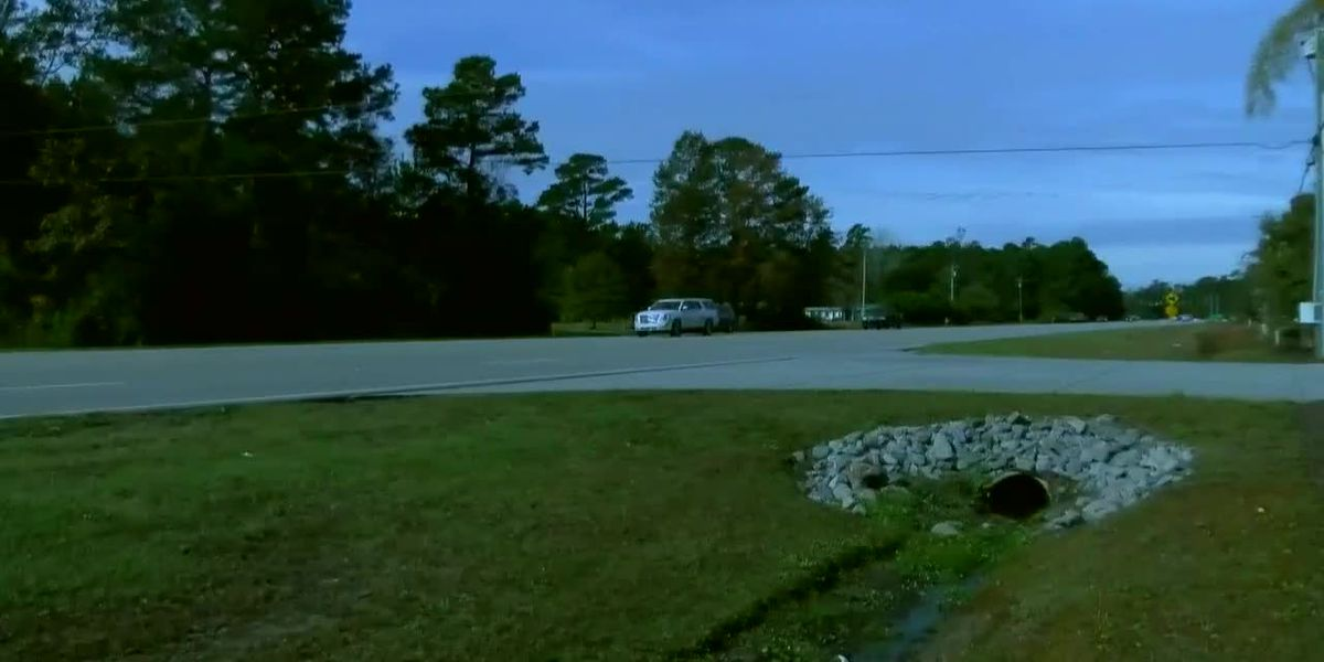 Horry County considering multi-use path for Holmestown Road