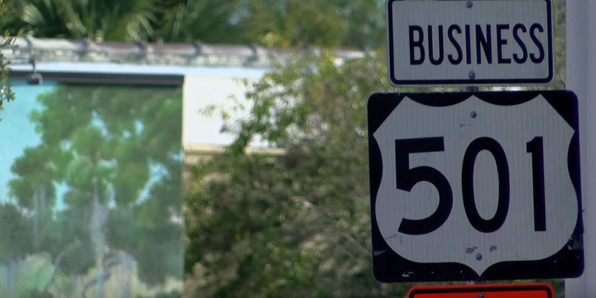 Proposed Lake Busbee Bypass could alleviate traffic from U.S. 501