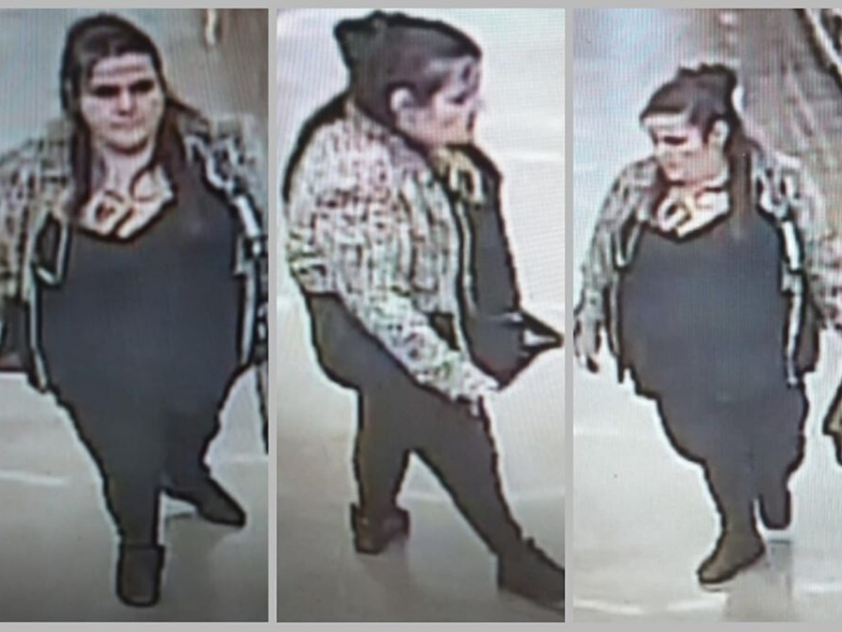 Police ask for help in search for North Myrtle Beach purse thief