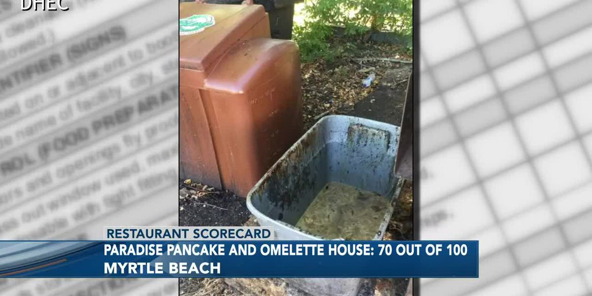 Restaurant Scorecard: Inspectors uncover rotten bananas, moldy tomato, dead bugs