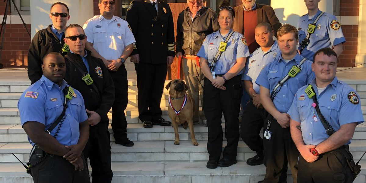Dog who saved owner from fire honored by Lowcountry firefighters