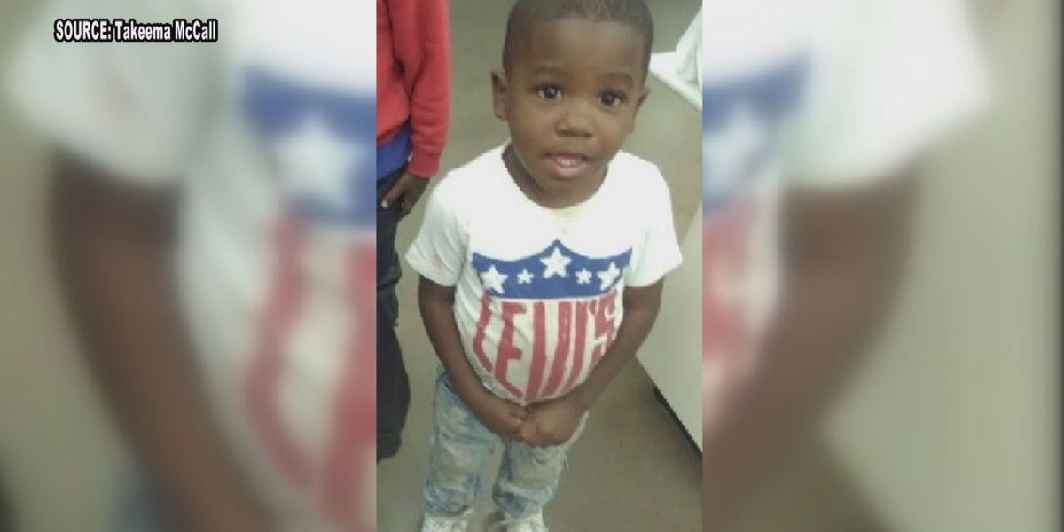Dillon boy, 4, requires surgery after being attacked by a pit bull