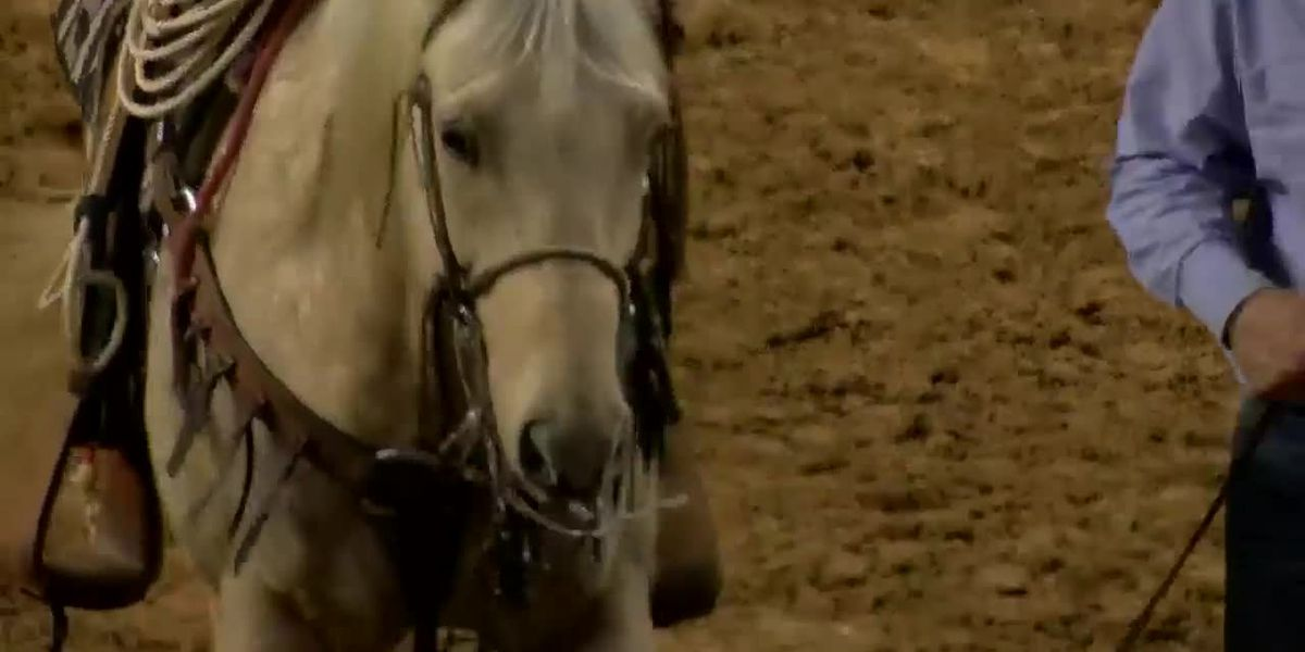 Florence rodeo entertains special needs children