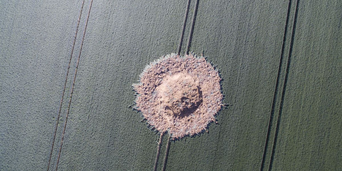 Crater appears in German field, apparently caused by WWII bomb