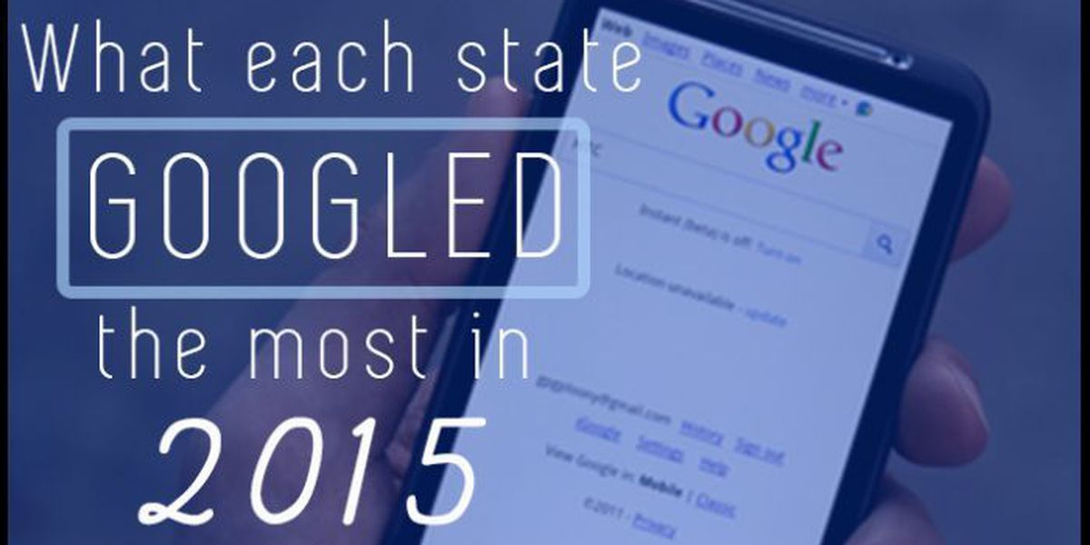 What each state googled the most in 2015