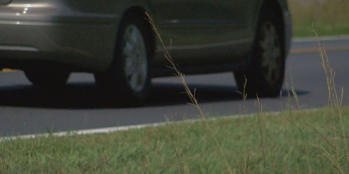 Horry County leaders hope to widen part of Highway 701 near Loris