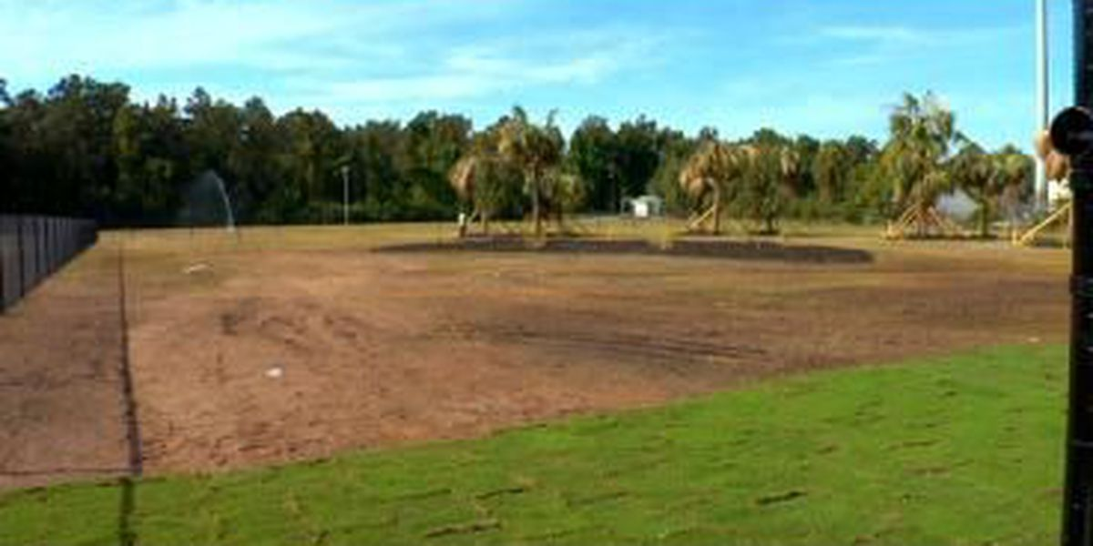 Conway dog park soft opening in November