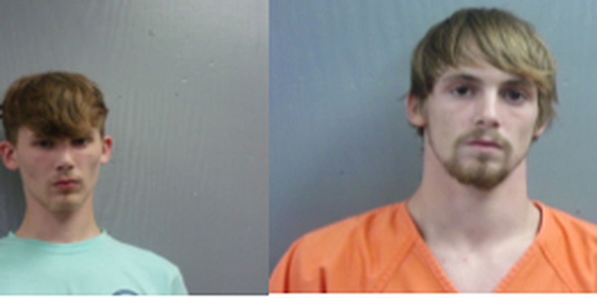Pair arrested for stealing over 60 firearms from Chesterfield residence