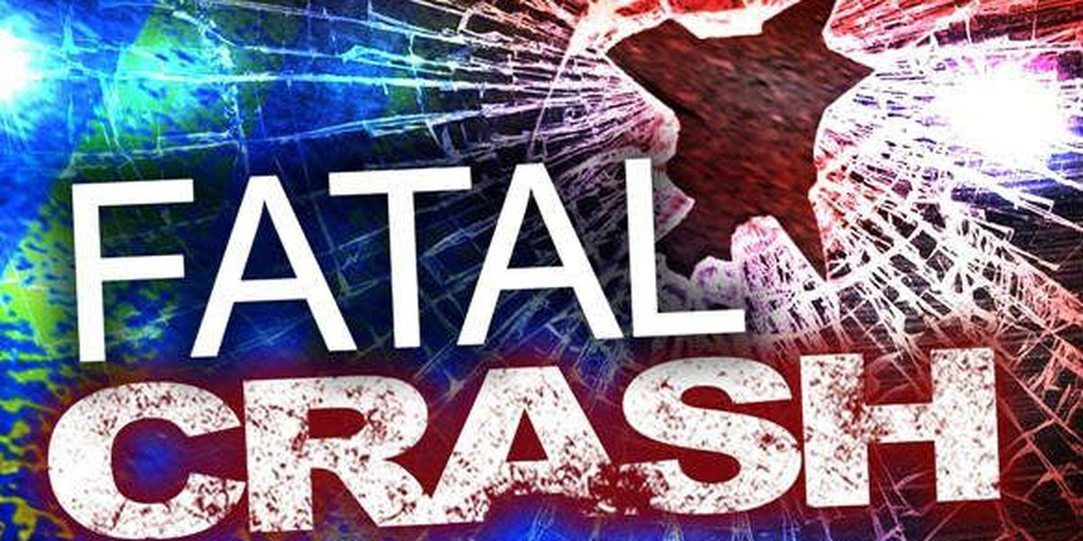 Pedestrian struck by train, killed in Cheraw