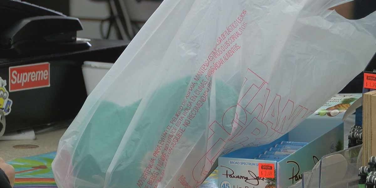 Plastic bag ban in North Myrtle Beach passes, goes into effect January 2021