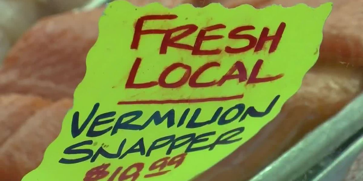 Part 1: WMBF News investigates if local seafood actually comes from the Carolina coast