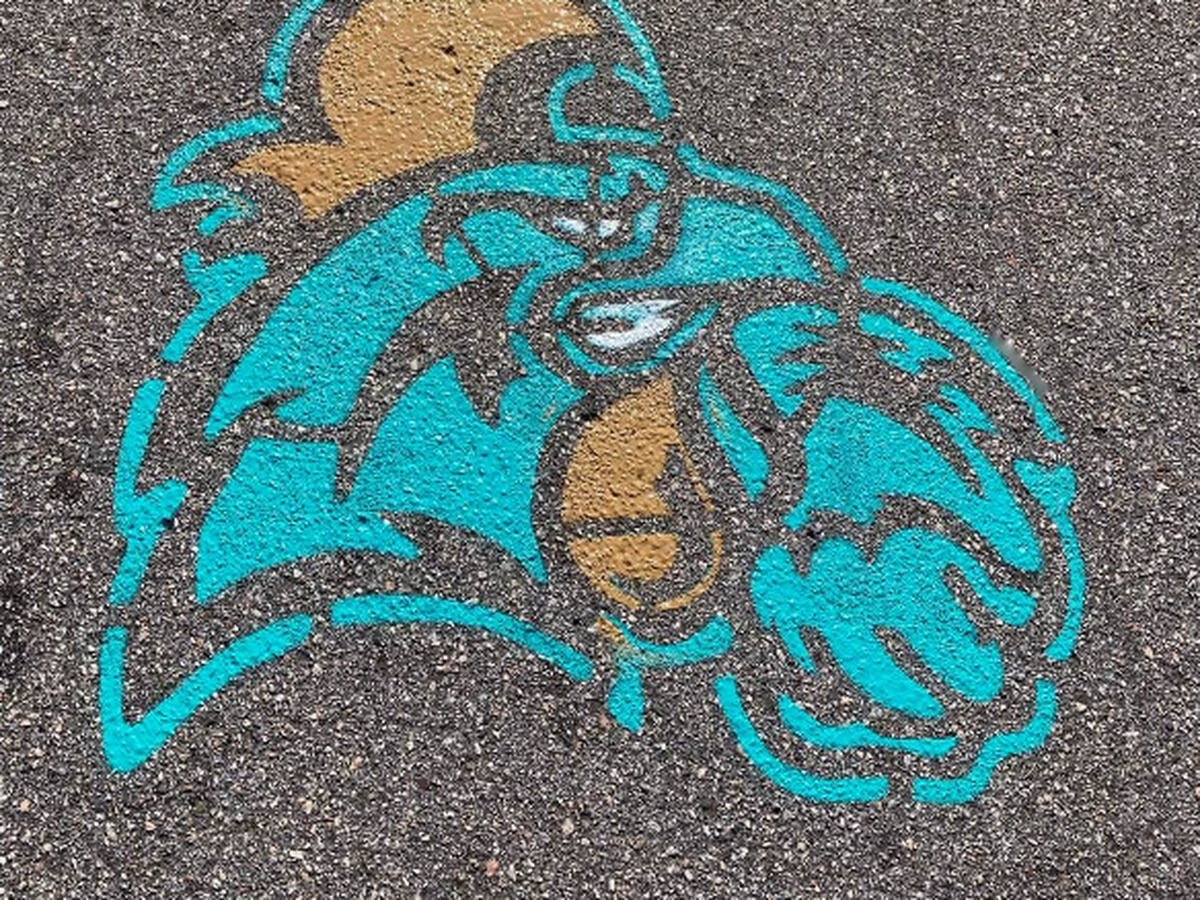 Portions of roads closed as Conway is 'painting the town teal'