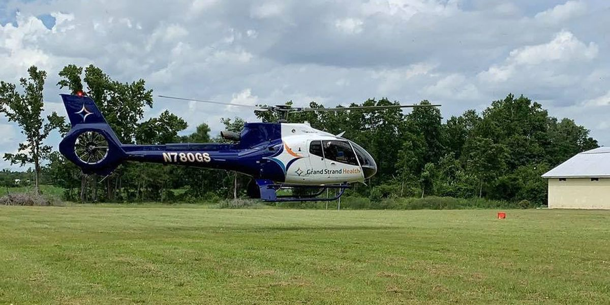 HCFR: Man flown to hospital after dog bite in Green Sea
