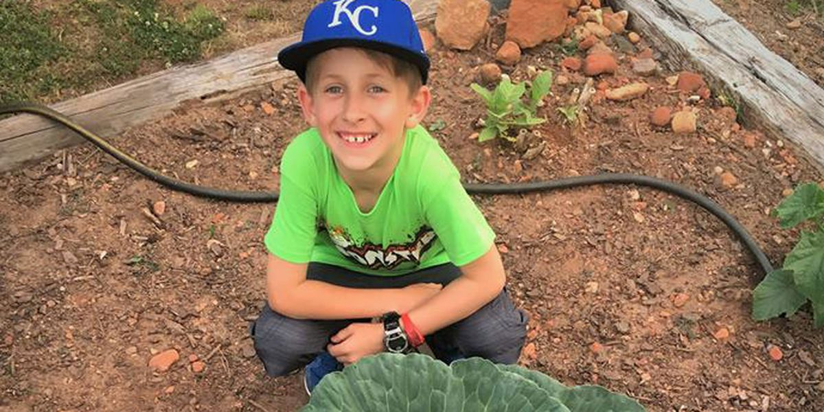 Alabama third grader wins award after growing colossal 30-pound cabbage
