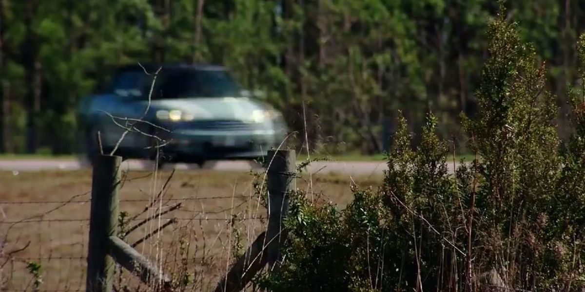 WMBF Investigates: Highway 22 noise a concern after trees cut down for power line