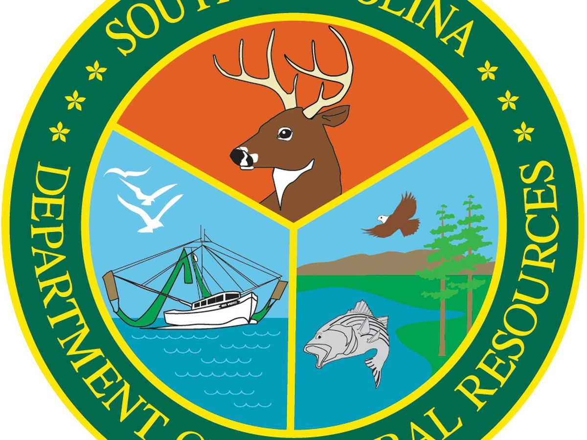 SCDNR boat titling, license sales office in Horry County to close due to positive COVID-19 test