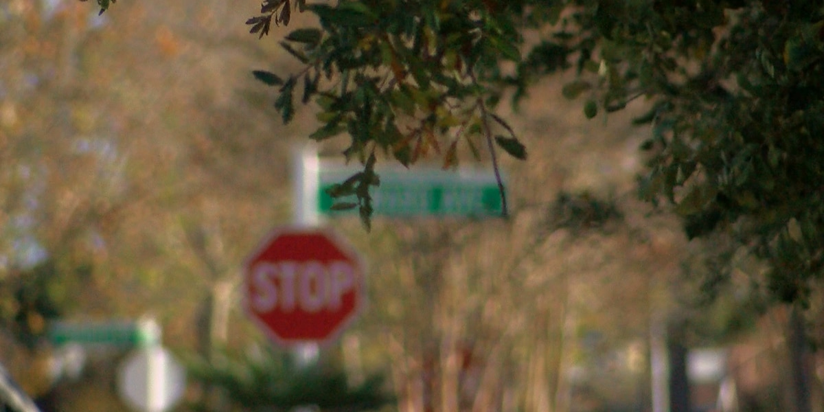 Myrtle Beach could offer property owners a formal way to request traffic safety improvements