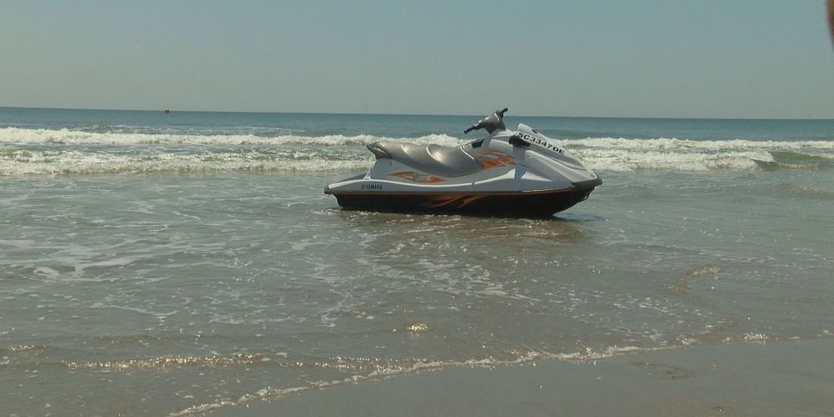 Rescue of pilot community effort following plane crash near Myrtle Beach State Park