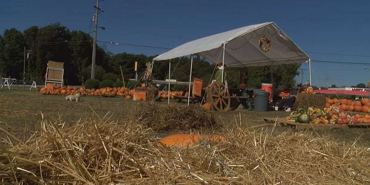 Police respond to counterfeit cash at church's pumpkin patch fundraiser