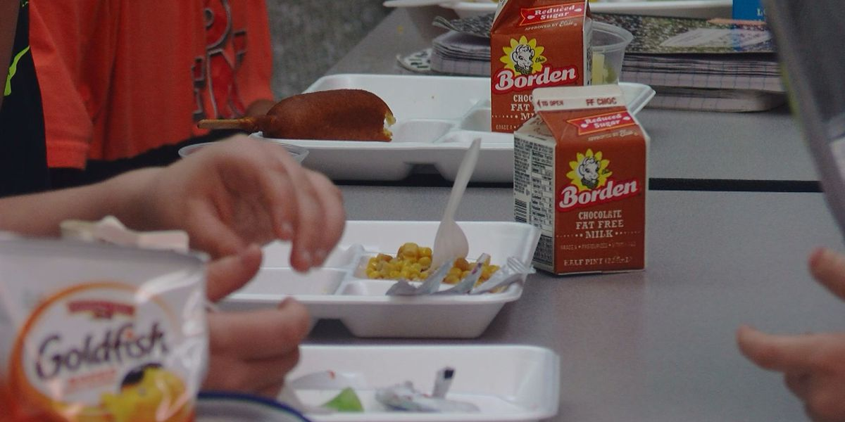 WMBF Investigates: What happens when school lunches go unpaid