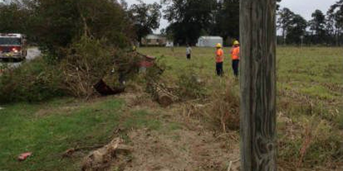 Two hospitalized after hitting tree and light pole in Aynor
