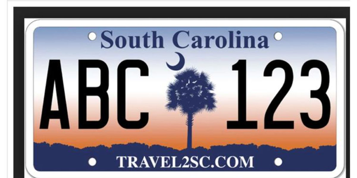 Horry County police eyeing license plate readers