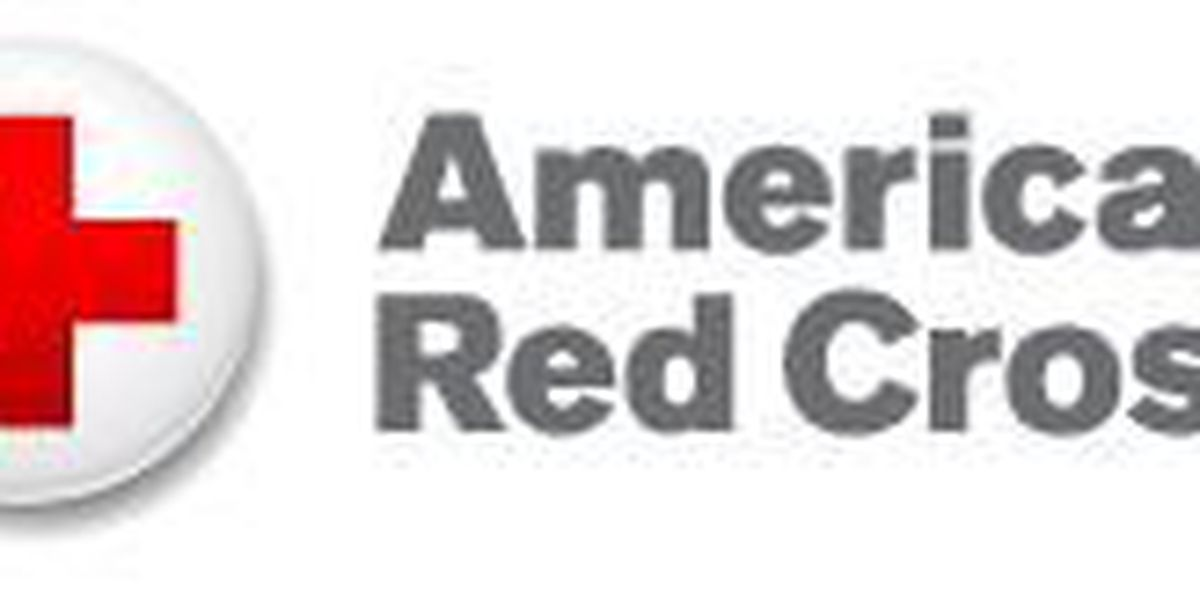 American Red Cross Nurse Assistant Training Program Launches In Sc