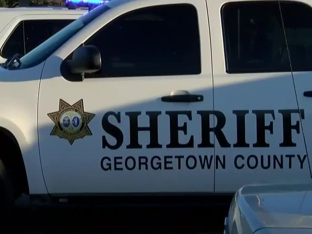 Deputies arrest juvenile accused of trying to break into two Georgetown County businesses