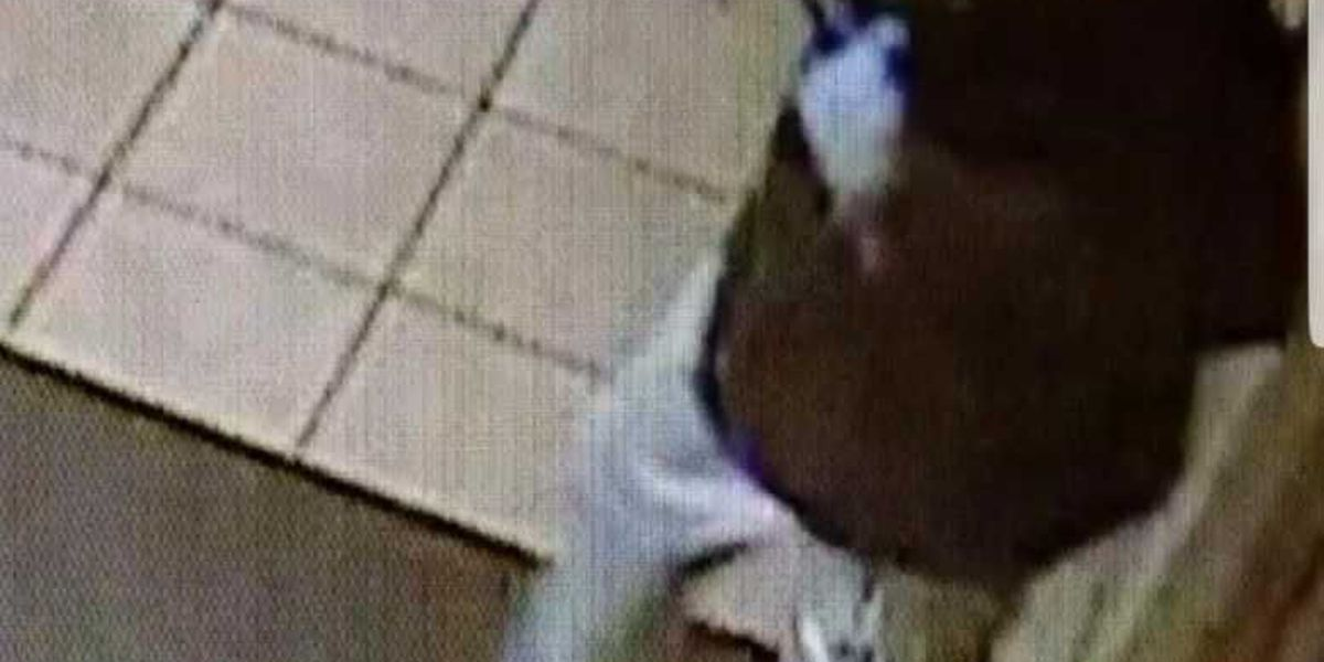 Darlington Deputies investigating attempted to robbery at an area Burger King