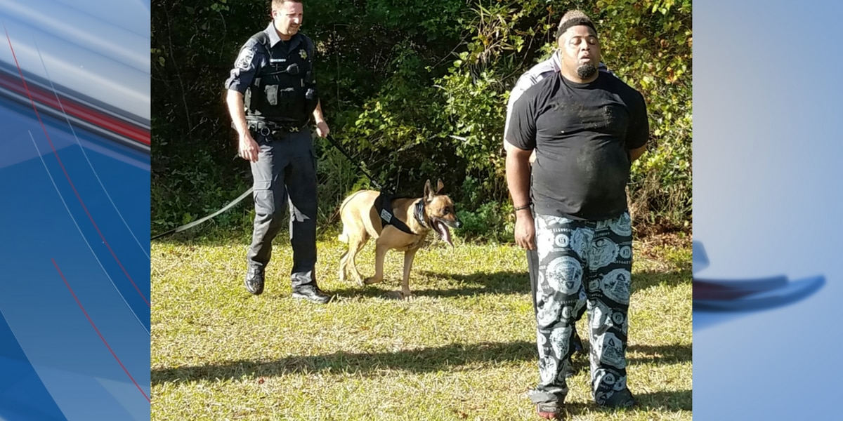 Deputies, K9 Blitz track down suspect wanted in Dollar General robbery