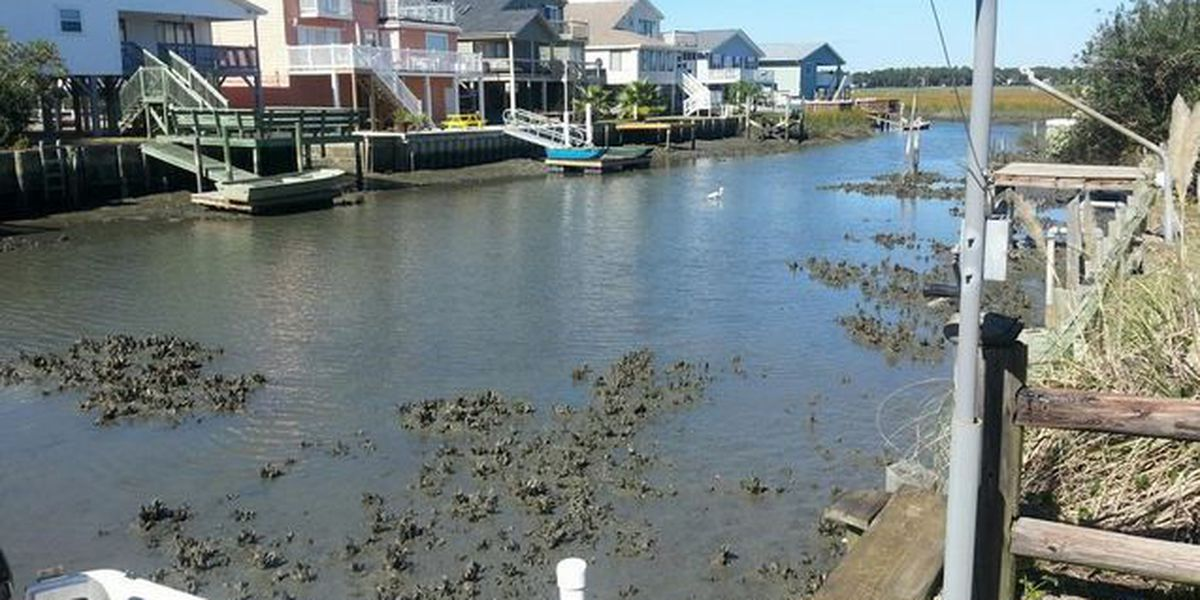 City leaders vote to pay for portion of Cherry Grove dredging project, leave residents to foot $5.5M
