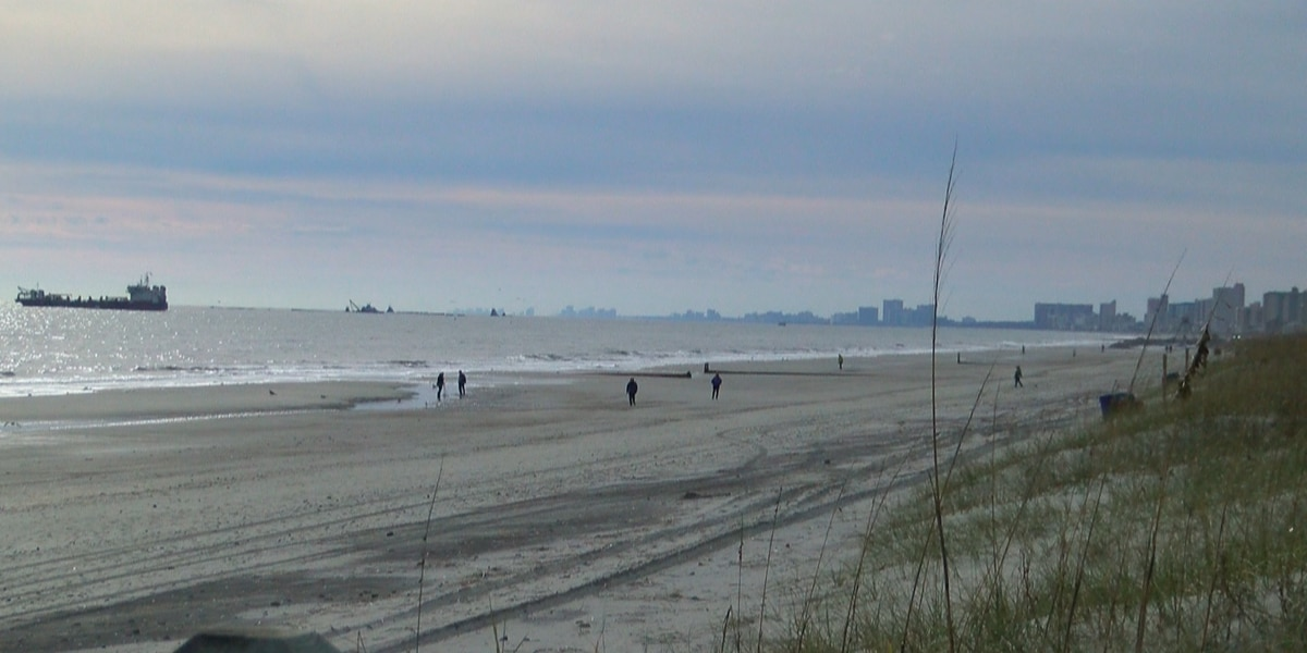 Coastal Alliance discusses dune height, beach renourishment during Wednesday meeting